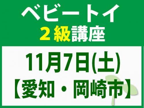 【愛知・岡崎市】11月17日(土) ベビートイ2級講座