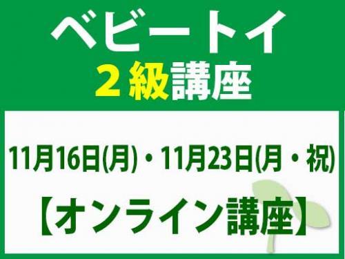 【オンラインライブ講座】11月16日(月)・11月23日(月・祝) ベビートイ2級講座