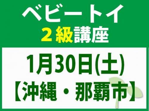 【沖縄・那覇市】1月30日(土) ベビートイ2級講座