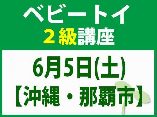 【沖縄・那覇市】6月5日(土) ベビートイ2級講座